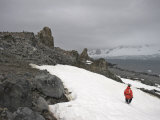 Guide Dressed in Orange Jacket Walking on Half Moon Island Photographic Print by  Keenpress