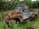 Abandoned Truck Rests in a Patch of Overgrown Grasses and Bushes Photographic Print by Paul Damien