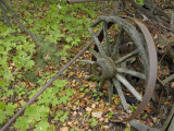 Old, Decaying, Wagon Wheel Among Green and Brown Maple Leaves Photographic Print by Scott Sroka