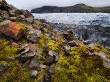 Cracked Rocks and Mosses Near a Vast Ice Field Photographic Print by Mattias Klum