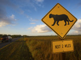 Panther Crossing Sign Photographic Print by Michael Melford