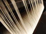 Close Up of Thread on a Loom Photographic Print by Raul Touzon