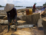 Workers on the Kapuas River Cut Waste Timber from a Sawmill Upstream Photographic Print by Mattias Klum