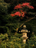 Colorful Trees and Sculpture in a Japanese Garden Fotografisk tryk af Mattias Klum