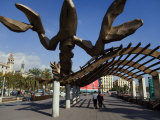 Giant Lobster Near the Port of Barcelona Photographic Print by Scott Warren