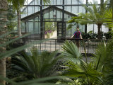Tropical Greenhouse at Longwood Gardens Photographic Print by Scott Warren