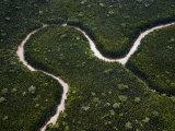 Small Meandering River Between Sarawak River and Samarahan River Fotografisk tryk af Mattias Klum