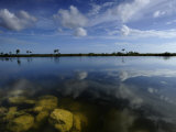 Cloud Reflections in Still Water in Everglades National Park Photographic Print by Raul Touzon