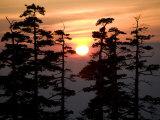Sunrise over Tokachidake Mountain Photographic Print by Michael S. Yamashita