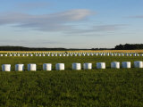 Estonia, Bales of Hay Wrapped in Plastic, Stacked on the Field Photographic Print by  Keenpress