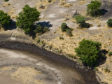 Crocodiles in the Semi Dry Katuma River Awaiting Prey Photographic Print by Michael Polzia