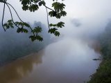 Mists Rising from a Peruvian Rain Forest and River Photographic Print by Mattias Klum