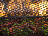 Organic Red and Green Chile Peppers Roast on a Grill Photographic Print by Ralph Lee Hopkins