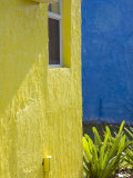Colorful Buildings at a Tropical Andros Island Getaway Photographic Print by Scott Warren