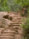 Stone Steps on Trail, Zion National Park, Utah, Monument Valley, USA Photographic Print by John Burcham