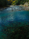 Fly Fishing for Atlantic Salmon on the St Jean River, Quebec Photographic Print by Nick Norman