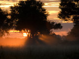 Sunset with Silhouetted Trees over a Grassland in the Okavango Delta Photographic Print by Roy Toft