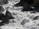 Foaming Rapids in a River Photographic Print by David Evans