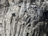 Detail of Rock with Column-Like Construction Photographic Print by Mattias Klum