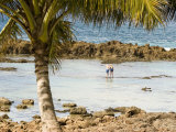 Senior Couple Walk in the Shallow Waters of the Coast of Oahu Photographic Print by Charles Kogod
