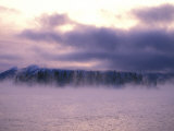 Fog Shields a Forest Beyond Atlin Lake Photographic Print by Nick Norman