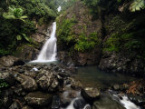 La Mina Waterfall Cascades over Rocks in the Rain Forest Photographic Print by Raul Touzon