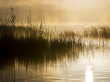 Fog and Mists Rising from Lake Mclaren in the Early Morning Fotografisk tryk af Mattias Klum