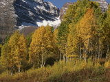 Majestic Maroon Bells Rise Above Aspen and Evergreen Trees Photographic Print by Charles Kogod