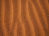 Sand Dune in Monument Valley, USA Photographic Print by John Burcham