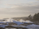 Stormy Day on Vancouver Island's West Coast Photographic Print by Taylor S. Kennedy