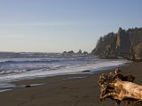 Beach in Olympic National Park Photographic Print by Taylor S. Kennedy