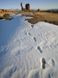 Tracks in Snow Leading to Balanced Rock in Arches National Park Photographic Print by Scott Warren