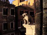 Sun Shines on a Small Lion Sculpture on the Roof of a Building Photographic Print by Gianluca Colla