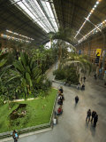 Tropical Garden Inside the Atocha Train Station in Madrid Photographic Print by Scott Warren
