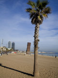 Along the Beachfront in Barcelona Photographic Print by Scott Warren
