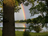 Rainbow over Water and Forest in the Summer Photographic Print by Mattias Klum