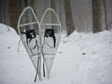 Set of Snowshoes are Stuck in the Snow Near a Trail into the Woods Photographic Print by Hannele Lahti