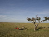 Picnic on the Plains of the Mara Photographic Print by Michael Polzia