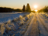 Sunlight Down a Dirt Road in a Snowy Winter Landscape Photographic Print by Mattias Klum