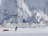 Man Pullls Sled on Sea Ice in Front of Cracked, Patterned Glacier Toe Photographic Print by John Dunn
