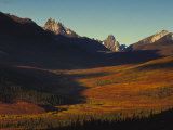 Pristine Valley in Tombstone Territorial Park Photographic Print by Nick Norman