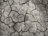 Cracked Mud at the Bisti Badlands Wilderness Photographic Print by Scott Warren