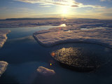 Seal Hole on Arctic Sea Ice Photographic Print by Nick Norman