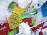 Buddhist Prayer Flags in Fresh Snow at Feilaisi Photographic Print by Scott Warren