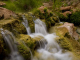 Havasu Creek Waters Spilling over Rocks at Travertine Cascades Photographic Print by Ralph Lee Hopkins