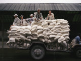 Men Sit on Bags of Flour at a Manufacturing Plant in Hunan Province Photographic Print by  xPacifica