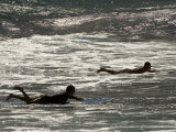 Surfers Paddle on their Boards in the Pacific Ocean in Hawaii Fotografisk tryk af Charles Kogod