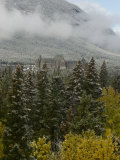 Early Snow Dusts Fall Colored Trees Surrounding Famed Banff Springs Hotel Photographic Print by Gordon Wiltsie