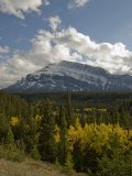 Fall Colors Brighten a Forest Below Mount Rundle in Banff National Park Photographic Print by Gordon Wiltsie