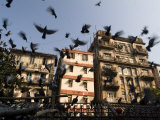 Pigeons Fly at Kothari Kaboota Khanna Near the Victoria Terminus Photographic Print by Abraham Nowitz
